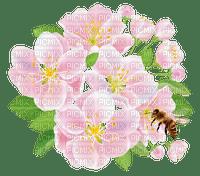 PINK FLOWERS spring  rose fleur printemps