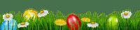 easter eggs GRASS  oeufs pâques HERBE  deco