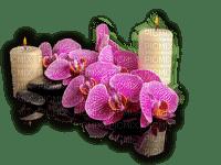patymirabelle fleurs et  bougies
