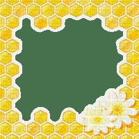 honeycomb frame bee cadre  nid d´ abeille