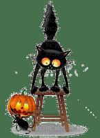 chat noir cat black halloween