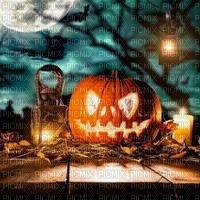 pumpkin citrouille kürbis    fond background  halloween
