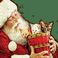 SANTA CLAUSE  cats PERE NOEL chats