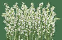 grass deco herbe