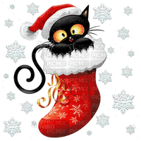 christmas cat in stocking chat noel