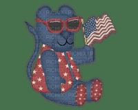 Kathleen Reynolds 4th July American USA Lion Cub