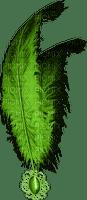 Kaz_Creations St.Patricks Day Deco Feathers
