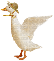 Duck.Canard.Pato.Kaczki.Goose.Oie.Victoriabea