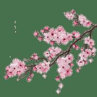 Cherry_tree  Bb2