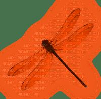 Dragonfly.Orange