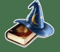 WIZZARD BOOK HAT livre chapeau