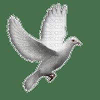 Kaz_Creations Deco Bird Birds Dove