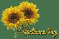 fleurs deco text autumn