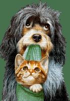chien et chat.Cheyenne63