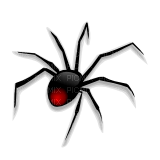 spider spinne  araignée  insect halloween gothic  tube