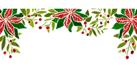 christmas flower border noel fleur bordure