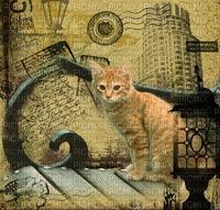 gala animals cat