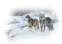 chantalmi  hiver winter neige snow noël loup
