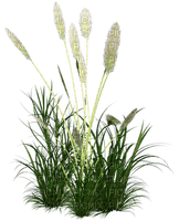 Kaz_Creations Garden Deco Grass Flowers