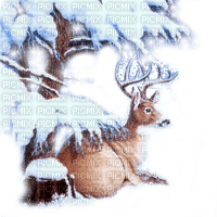 cerf hiver cadre bordure deer winter frame border