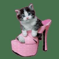 Kaz_Creations Cats Cat Kittens Kitten Shoes Shoe