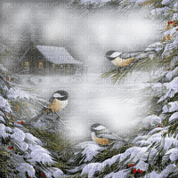 winter bg transparent house birds