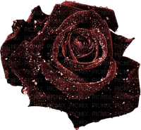 (✿◠‿◠) Rose Deco (◡‿◡✿) SerenaSerenity