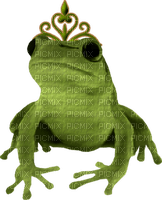 Kaz_Creations Frog Frogs