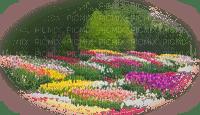 primavera, ressort, spring