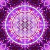 fond background hintergrund  purple