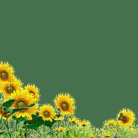 fleurs deco autumn