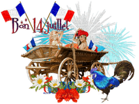14 juillet femmes women France fleur flower coq