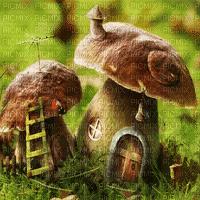 fantasy mushroom bg