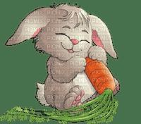 bunny easter  pâques