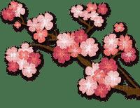 cherry tree  Bb2