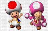 toad  toadette