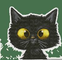 black cat chat noir