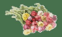 Fleur.Flowers.tulipes.tulips.Bouquet.Easter.Spring.Printemps. -Victoriabea
