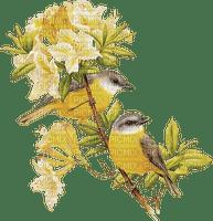 soave deco vintage branch bird yellow
