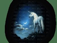 unicorn night fantasy licorne nuit