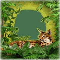 jungle frame wild cat cadre
