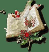 .livre noel christmas book