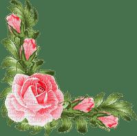 rose corner deco fleur coin