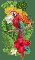 tropical flowers parrot fleurs tropique perroquet