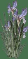 Kaz_Creations Deco Grass Garden Flowers