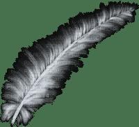feathers anastasia