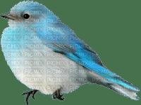 Kaz_Creations Deco Easter Bird Blue