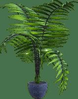 plant palm leaves room chambre zimmer pflanze paume pot  spring printemps  deco    summer ete  tube  sommer  garden jardin garten