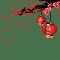 Chinese lanterns  Bb2