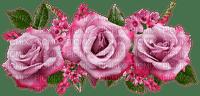 roses, ruusut, kukka, flower, fleur